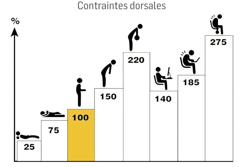 contraintes dorsales